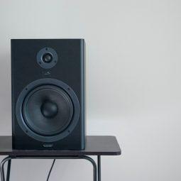 Bluetooth zvičnici i zvučnici sa akumulatorom - Karaoke