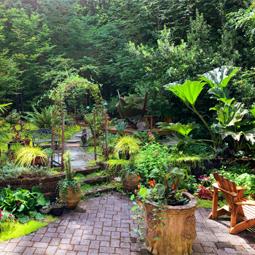 Dvorište i Bašta